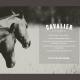 cavalier-portada-2_10